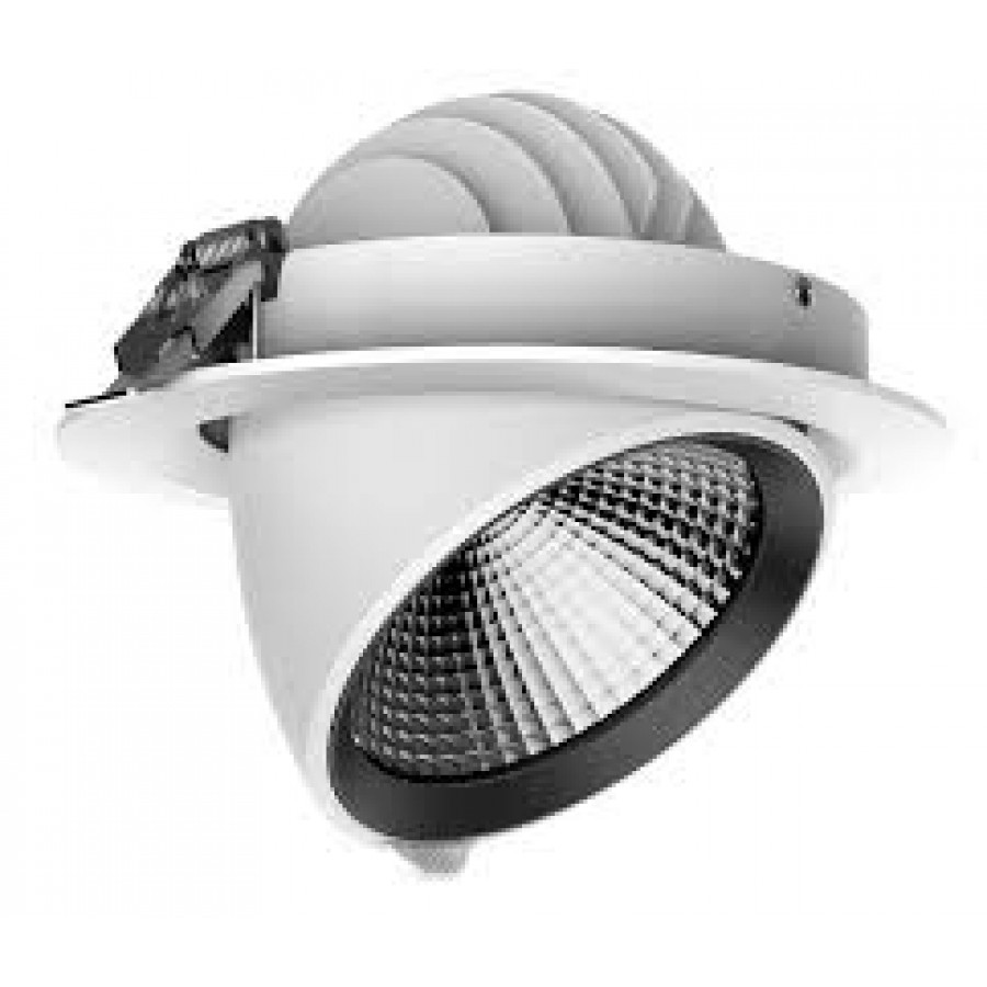 LED Tilt Downlight